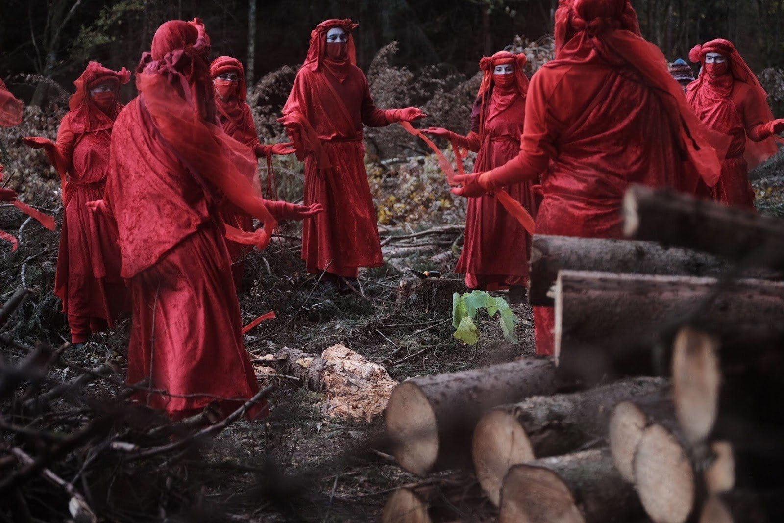 The Red Brigade mourn a forest being cleared for a motorway in Germany.