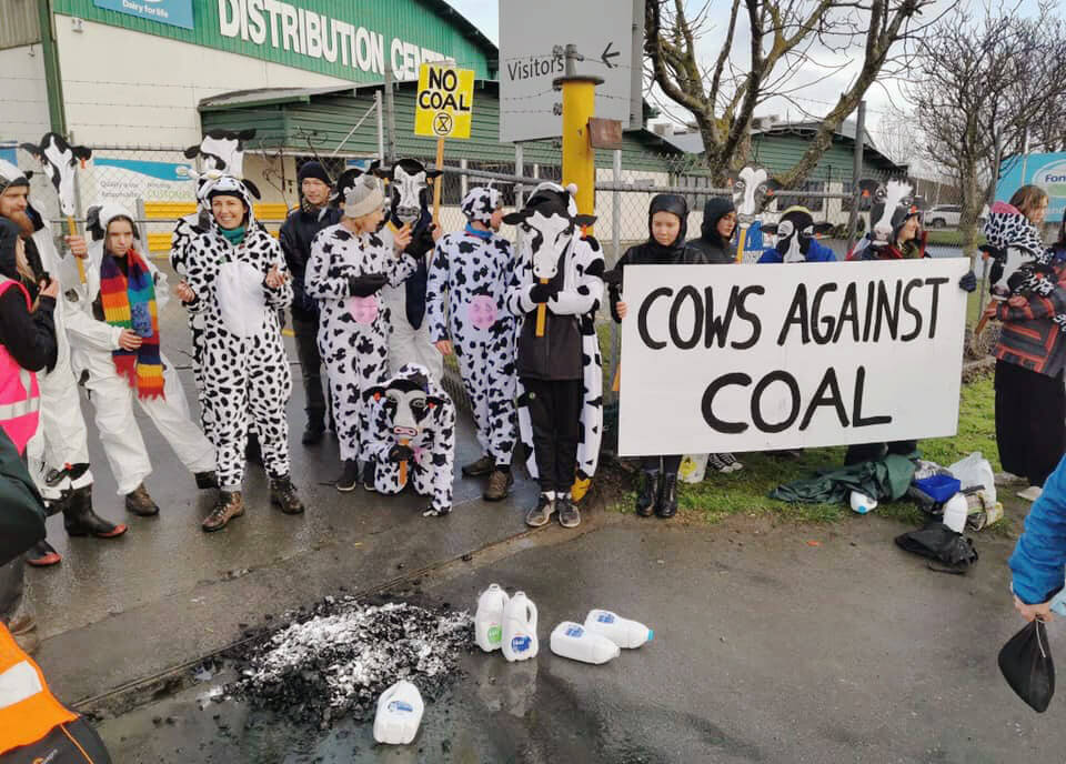 "Photograph of action, with banner ""Cows Against Coal."""