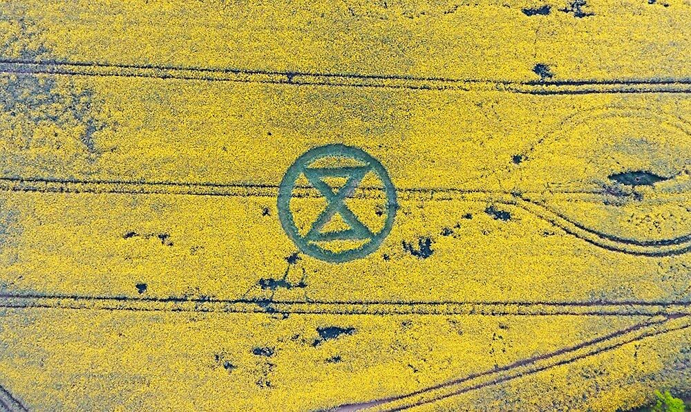 Crop Circle in the shape of the Extinction Rebellion symbol