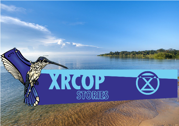 image for article xrcop: XR Universities Uganda puts on an action for World Water Day